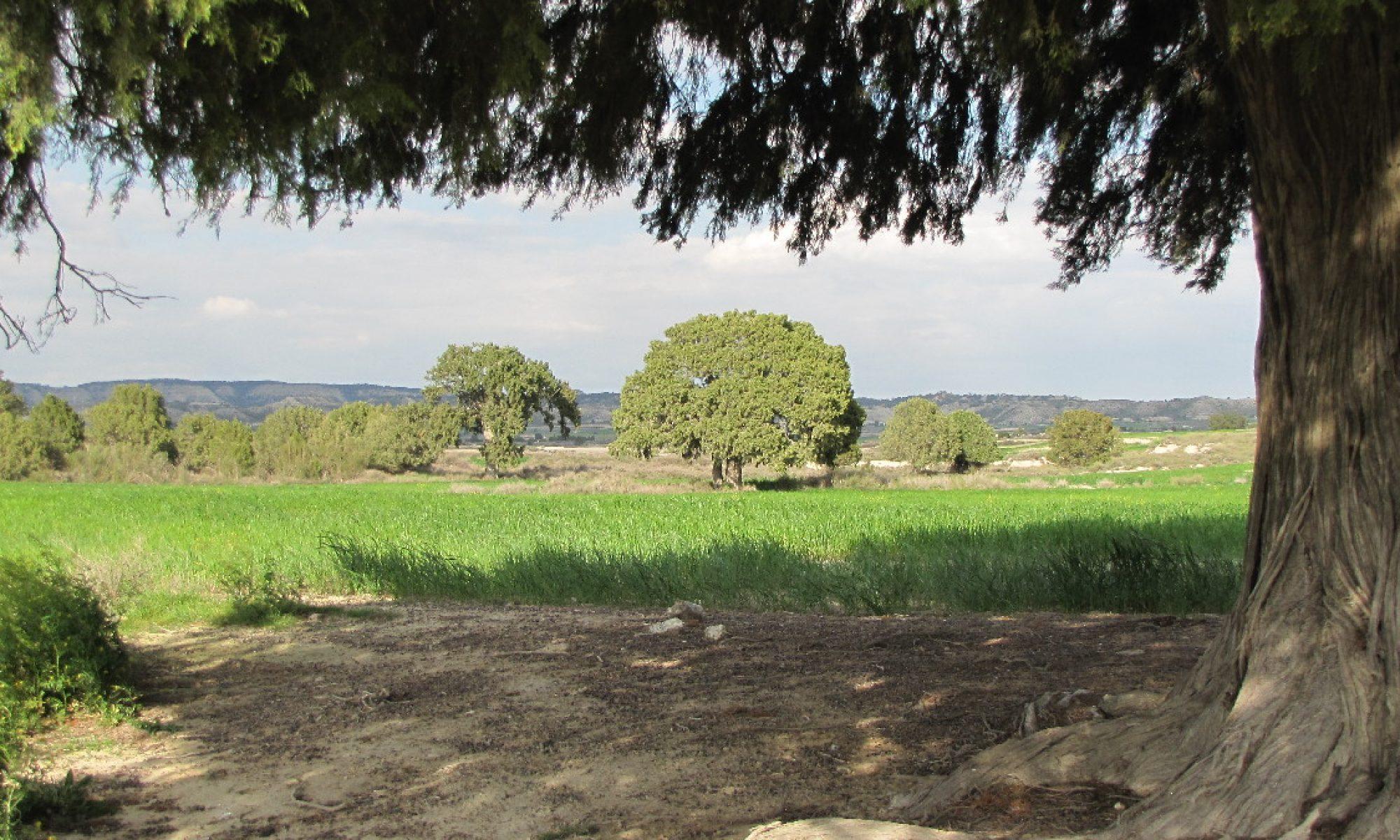 Jardín Natural